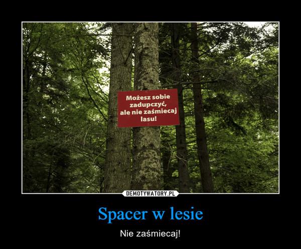 Spacer w lesie – Nie zaśmiecaj! Możesz sobie zadupczyć, ale nie zaśmiecaj lasu