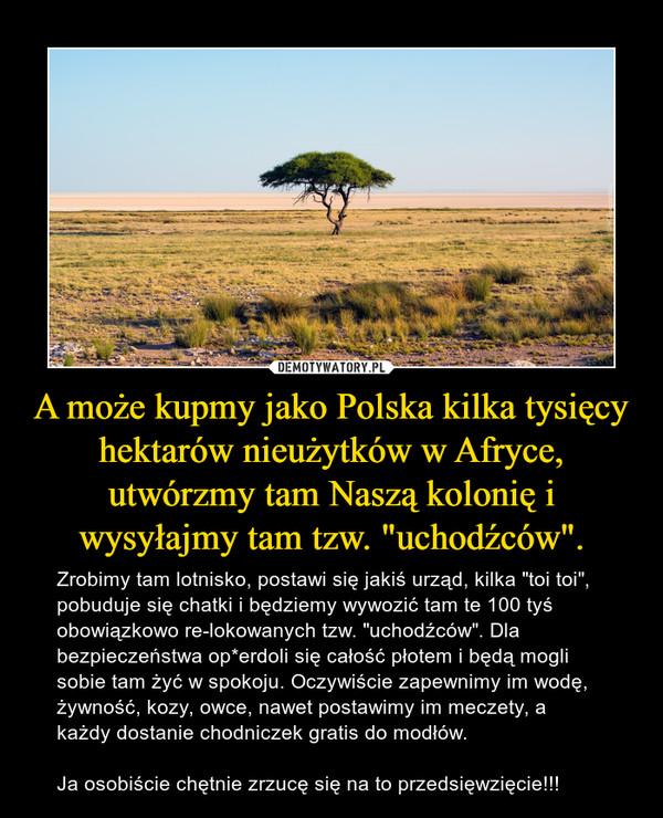 """A może kupmy jako Polska kilka tysięcy hektarów nieużytków w Afryce, utwórzmy tam Naszą kolonię i wysyłajmy tam tzw. """"uchodźców"""". – Zrobimy tam lotnisko, postawi się jakiś urząd, kilka """"toi toi"""", pobuduje się chatki i będziemy wywozić tam te 100 tyś obowiązkowo re-lokowanych tzw. """"uchodźców"""". Dla bezpieczeństwa op*erdoli się całość płotem i będą mogli sobie tam żyć w spokoju. Oczywiście zapewnimy im wodę, żywność, kozy, owce, nawet postawimy im meczety, a każdy dostanie chodniczek gratis do modłów.Ja osobiście chętnie zrzucę się na to przedsięwzięcie!!!"""