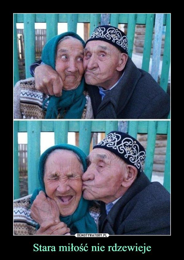Stara miłość nie rdzewieje –