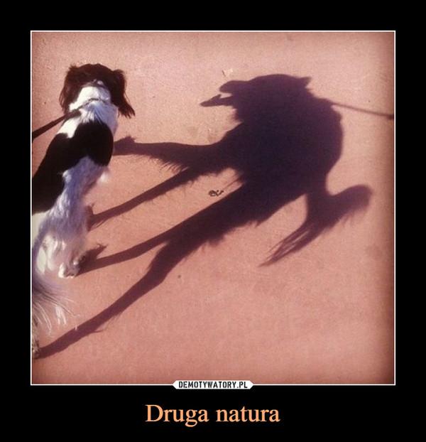 Druga natura –
