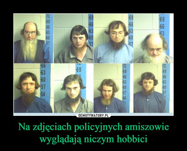 Na zdjęciach policyjnych amiszowie wyglądają niczym hobbici –