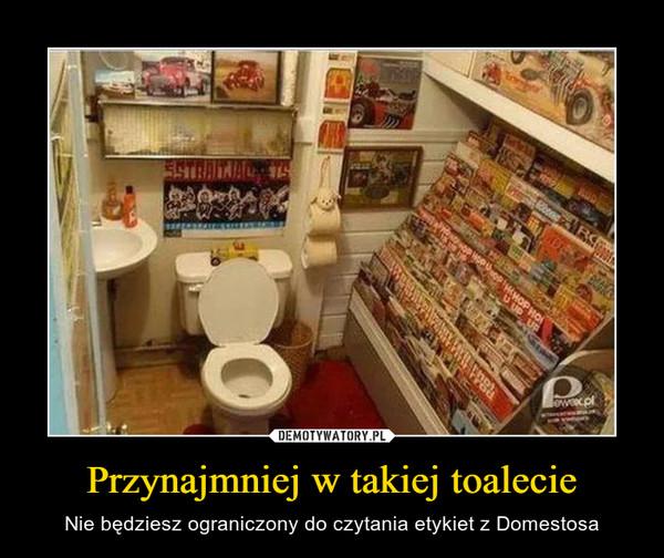 Przynajmniej w takiej toalecie – Nie będziesz ograniczony do czytania etykiet z Domestosa
