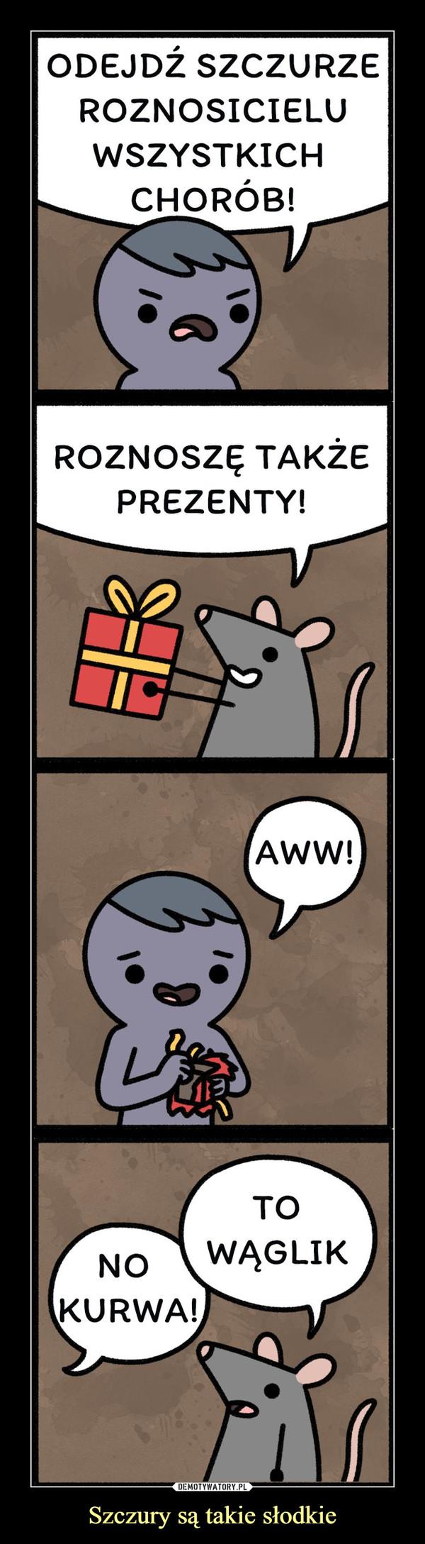 Szczury są takie słodkie –  Odejdź szczurze roznosicielu wszystkich chorób Roznosze także prezenty Aww To wąglik no kurwa