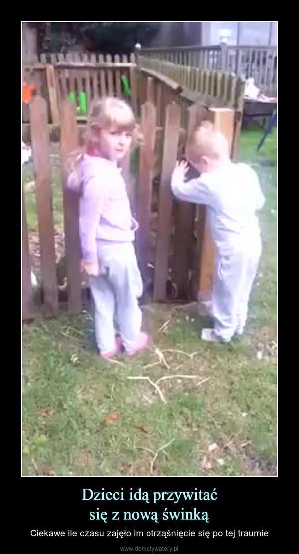 Dzieci idą przywitaćsię z nową świnką – Ciekawe ile czasu zajęło im otrząśnięcie się po tej traumie