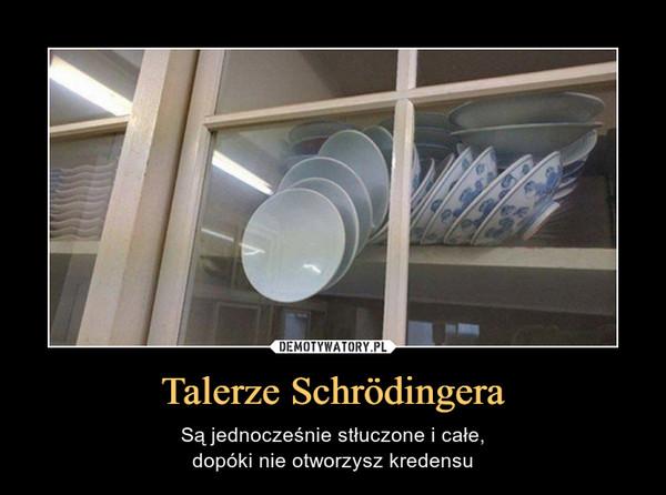 Talerze Schrödingera – Są jednocześnie stłuczone i całe,dopóki nie otworzysz kredensu