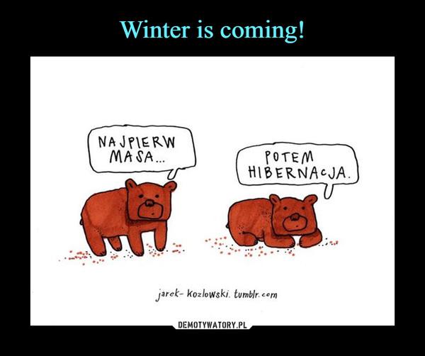 –  najpierw masapotem hibernacja