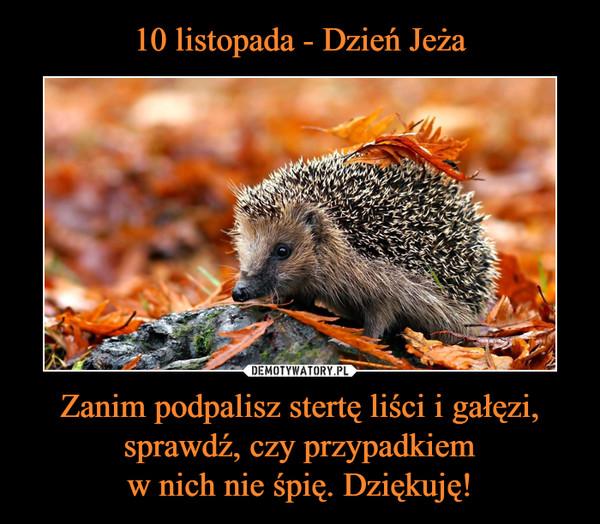 Zanim podpalisz stertę liści i gałęzi, sprawdź, czy przypadkiemw nich nie śpię. Dziękuję! –