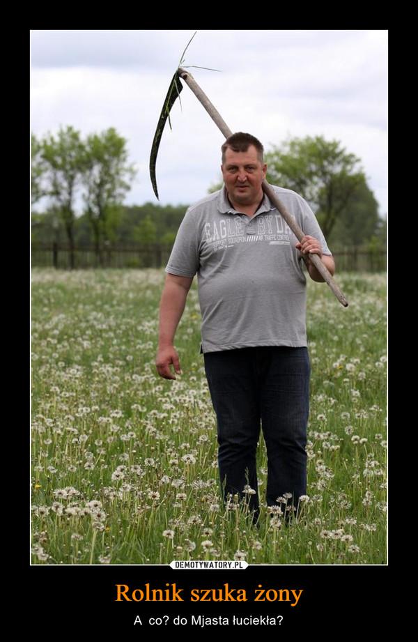 Rolnik szuka żony – A  co? do Mjasta łuciekła?