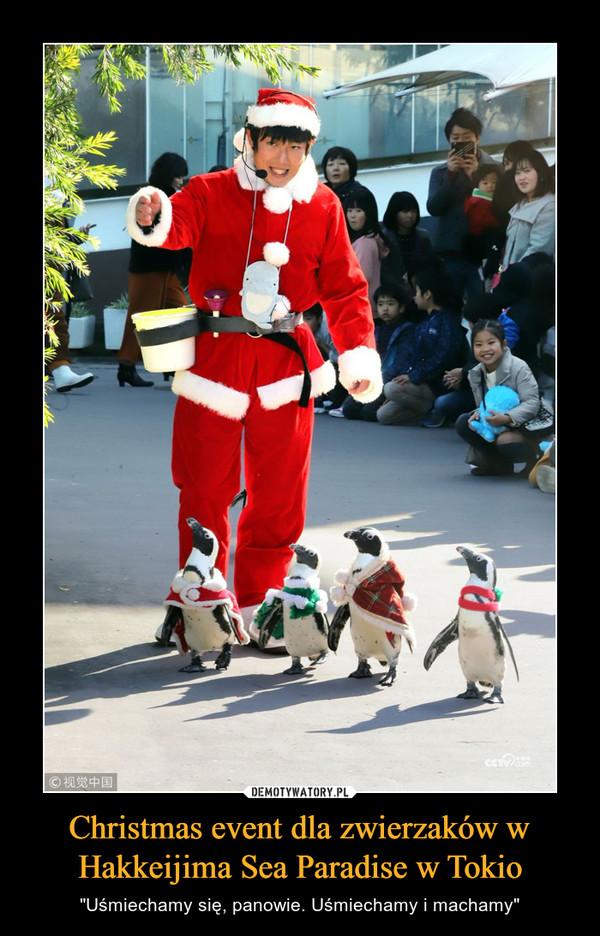 """Christmas event dla zwierzaków w Hakkeijima Sea Paradise w Tokio – """"Uśmiechamy się, panowie. Uśmiechamy i machamy"""""""