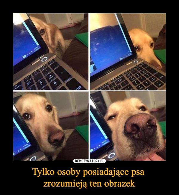 Tylko osoby posiadające psa zrozumieją ten obrazek –