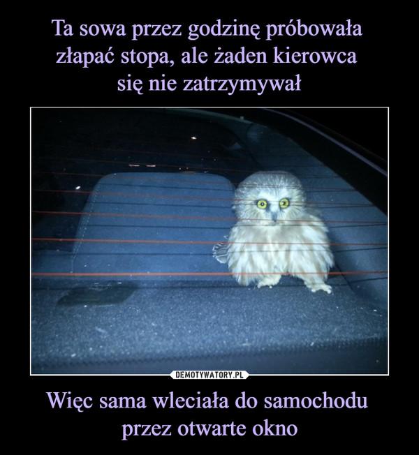 Więc sama wleciała do samochodu przez otwarte okno –