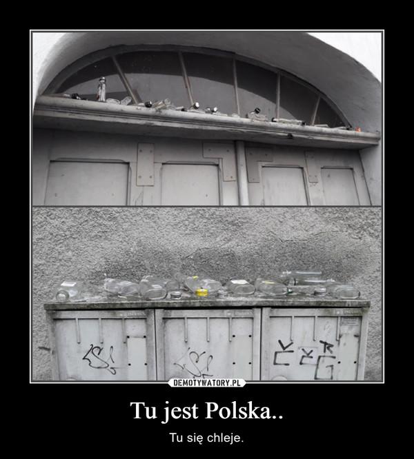 Tu jest Polska.. – Tu się chleje.