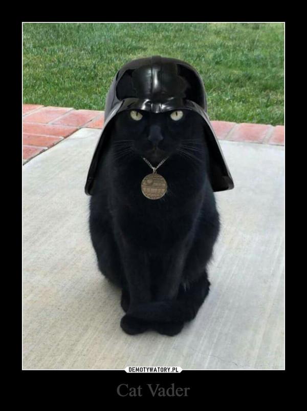 Cat Vader –