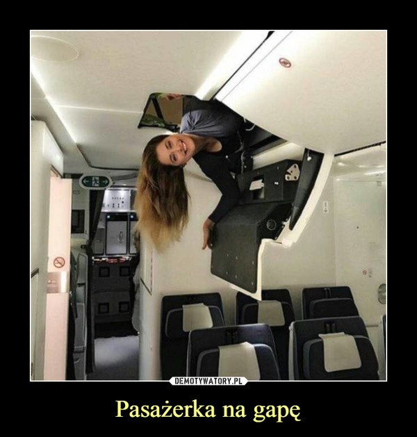 Pasażerka na gapę –