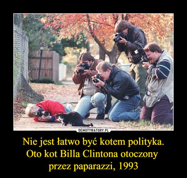 Nie jest łatwo być kotem polityka.Oto kot Billa Clintona otoczony przez paparazzi, 1993 –