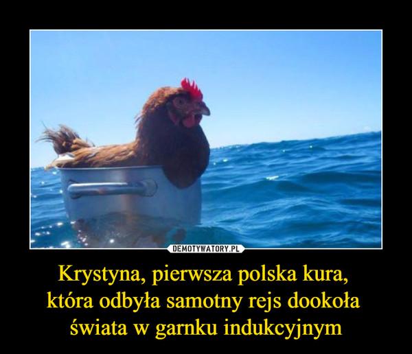 Krystyna, pierwsza polska kura, która odbyła samotny rejs dookoła świata w garnku indukcyjnym –