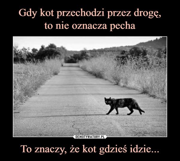 To znaczy, że kot gdzieś idzie... –