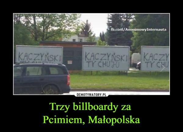 Trzy billboardy za Pcimiem, Małopolska –  Kaczyński ty chuju