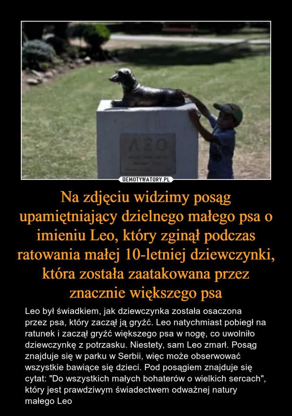 """Na zdjęciu widzimy posąg upamiętniający dzielnego małego psa o imieniu Leo, który zginął podczas ratowania małej 10-letniej dziewczynki, która została zaatakowana przez znacznie większego psa – Leo był świadkiem, jak dziewczynka została osaczona przez psa, który zaczął ją gryźć. Leo natychmiast pobiegł na ratunek i zaczął gryźć większego psa w nogę, co uwolniło dziewczynkę z potrzasku. Niestety, sam Leo zmarł. Posąg znajduje się w parku w Serbii, więc może obserwować wszystkie bawiące się dzieci. Pod posągiem znajduje się cytat: """"Do wszystkich małych bohaterów o wielkich sercach"""", który jest prawdziwym świadectwem odważnej natury małego Leo"""