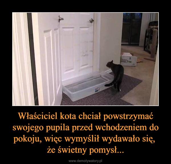 Właściciel kota chciał powstrzymać swojego pupila przed wchodzeniem do pokoju, więc wymyślił wydawało się, że świetny pomysł... –