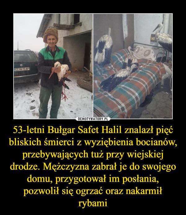 53-letni Bułgar Safet Halil znalazł pięć bliskich śmierci z wyziębienia bocianów, przebywających tuż przy wiejskiej drodze. Mężczyzna zabrał je do swojego domu, przygotował im posłania, pozwolił się ogrzać oraz nakarmił rybami –