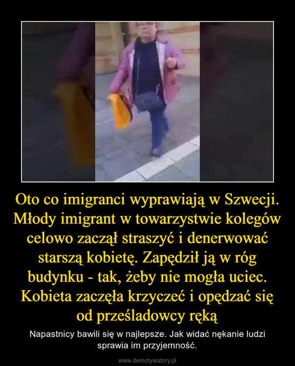 Oto co imigranci wyprawiają w Szwecji. Młody imigrant w towarzystwie kolegów celowo zaczął straszyć i denerwować starszą kobietę. Zapędził ją w róg budynku - tak, żeby nie mogła uciec. Kobieta zaczęła krzyczeć i opędzać się od prześladowcy ręką – Napastnicy bawili się w najlepsze. Jak widać nękanie ludzi sprawia im przyjemność.