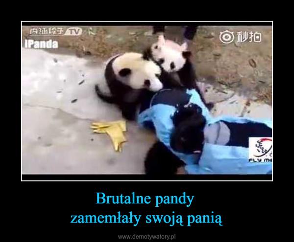 Brutalne pandy zamemłały swoją panią –