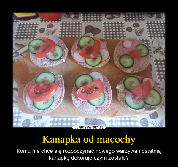 Kanapka od macochy – Komu nie chce się rozpoczynać nowego warzywa i ostatnią kanapkę dekoruje czym zostało?