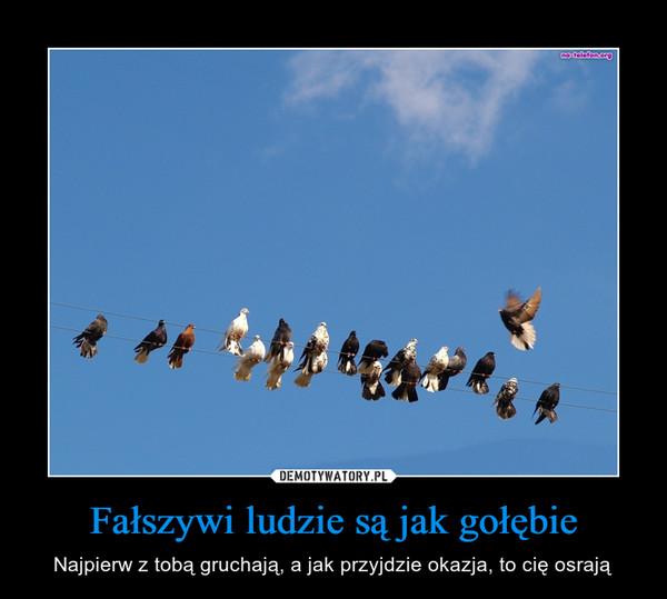 Fałszywi ludzie są jak gołębie – Najpierw z tobą gruchają, a jak przyjdzie okazja, to cię osrają