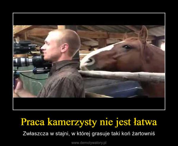 Praca kamerzysty nie jest łatwa – Zwłaszcza w stajni, w której grasuje taki koń żartowniś