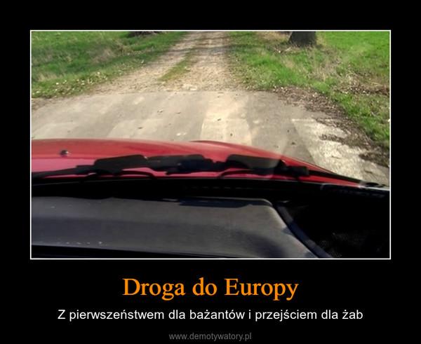 Droga do Europy – Z pierwszeństwem dla bażantów i przejściem dla żab