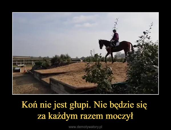 Koń nie jest głupi. Nie będzie się za każdym razem moczył –