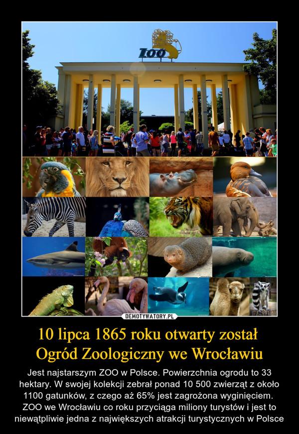 10 Lipca 1865 Roku Otwarty Został Ogród Zoologiczny We