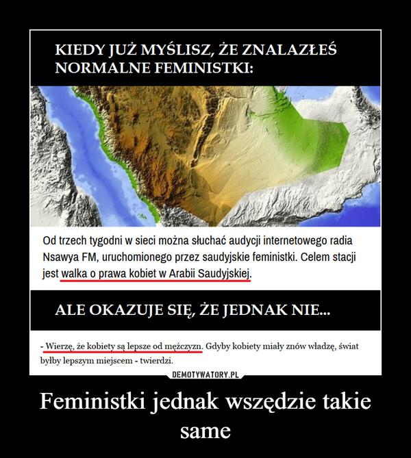 Feministki jednak wszędzie takie same –