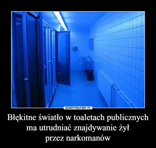 Błękitne światło w toaletach publicznych ma utrudniać znajdywanie żyłprzez narkomanów –