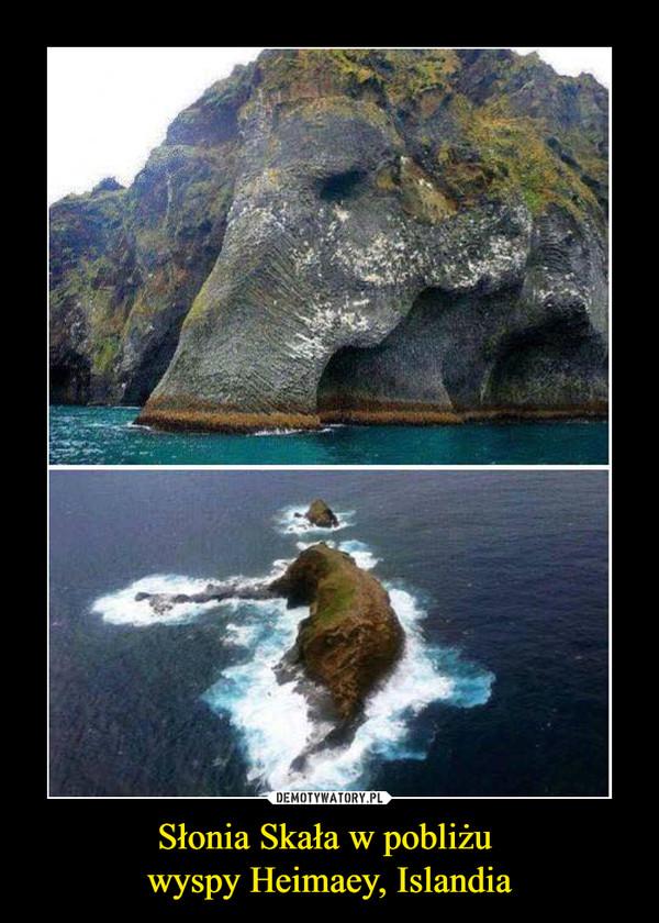 Słonia Skała w pobliżu wyspy Heimaey, Islandia –