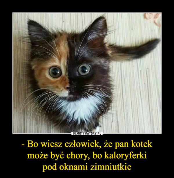 - Bo wiesz człowiek, że pan kotekmoże być chory, bo kaloryferkipod oknami zimniutkie –
