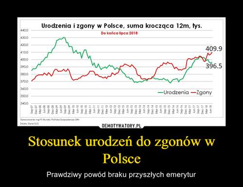 Stosunek urodzeń do zgonów w Polsce