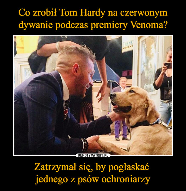 Zatrzymał się, by pogłaskać jednego z psów ochroniarzy –