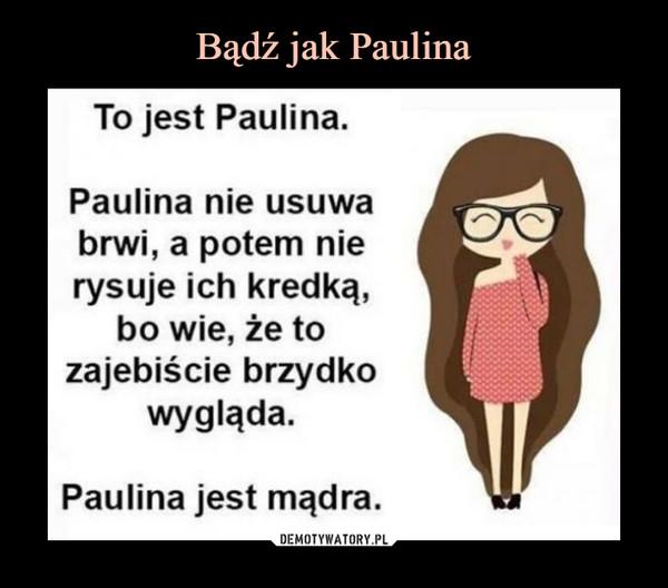 –  To jest Paulina. Paulina nie usuwa brwi, a potem nie rysuje ich kredką, bo wie, że to zajebiście brzydko wygląda. Paulina jest mądra.