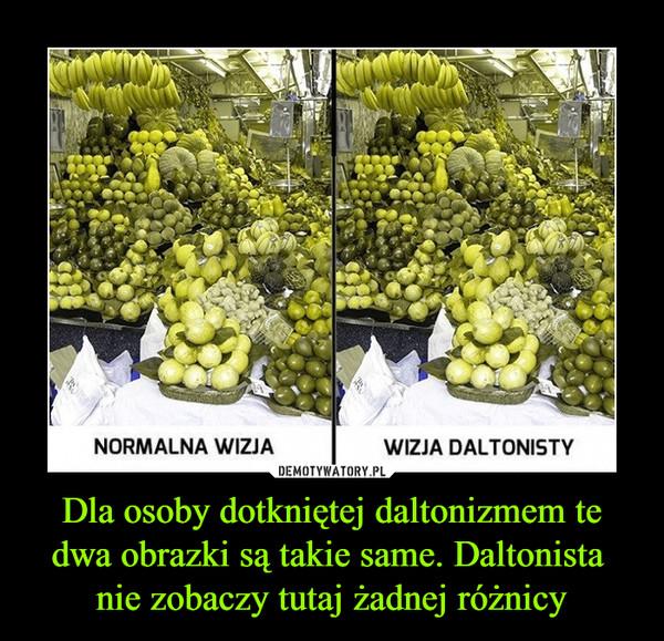 Dla osoby dotkniętej daltonizmem te dwa obrazki są takie same. Daltonista nie zobaczy tutaj żadnej różnicy –  NORMALNA WIZJA WIZJA DALTONISTY
