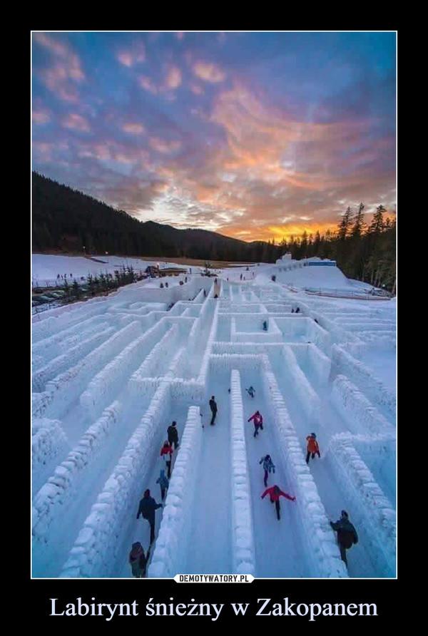 Labirynt śnieżny w Zakopanem –