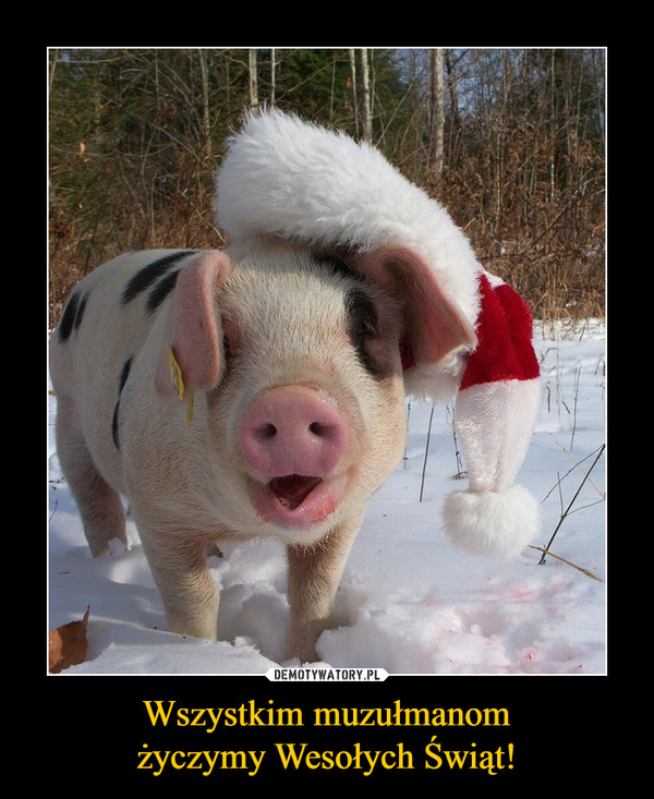 Wszystkim muzułmanom życzymy Wesołych Świąt!