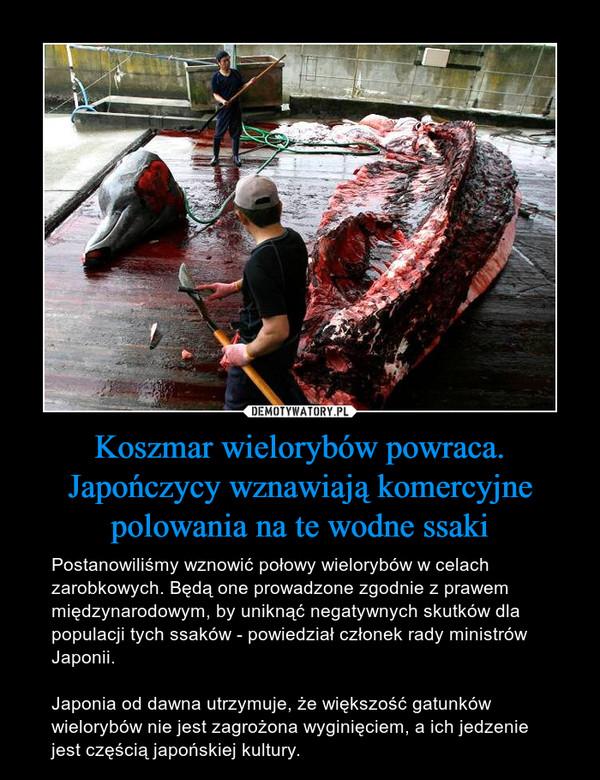 Koszmar wielorybów powraca. Japończycy wznawiają komercyjne polowania na te wodne ssaki – Postanowiliśmy wznowić połowy wielorybów w celach zarobkowych. Będą one prowadzone zgodnie z prawem międzynarodowym, by uniknąć negatywnych skutków dla populacji tych ssaków - powiedział członek rady ministrów Japonii.Japonia od dawna utrzymuje, że większość gatunków wielorybów nie jest zagrożona wyginięciem, a ich jedzenie jest częścią japońskiej kultury.