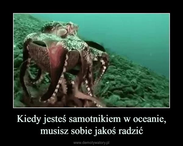 Kiedy jesteś samotnikiem w oceanie, musisz sobie jakoś radzić –
