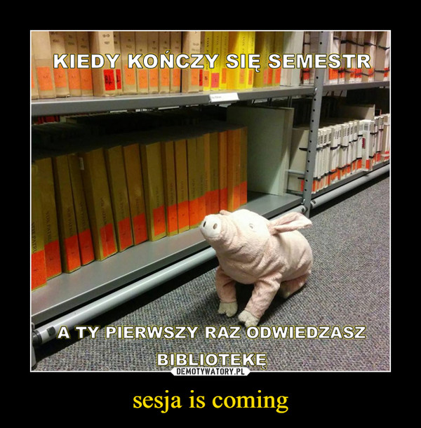 sesja is coming –