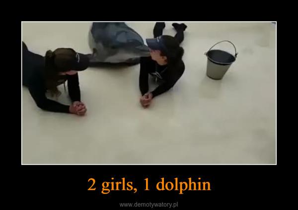 2 girls, 1 dolphin –