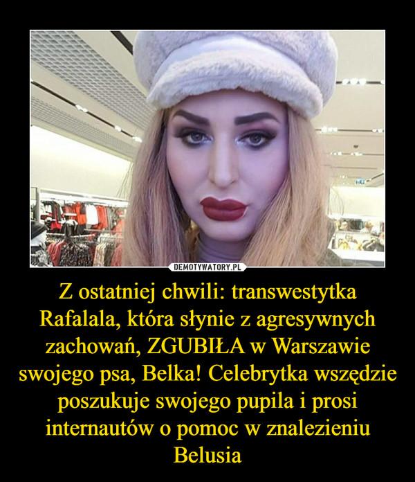 Z ostatniej chwili: transwestytka Rafalala, która słynie z agresywnych zachowań, ZGUBIŁA w Warszawie swojego psa, Belka! Celebrytka wszędzie poszukuje swojego pupila i prosi internautów o pomoc w znalezieniu Belusia –