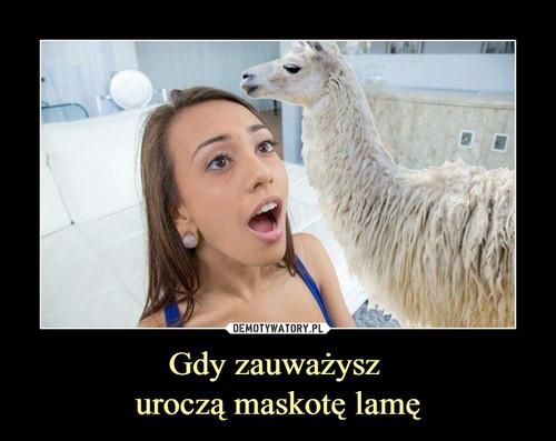 Gdy zauważysz  uroczą maskotę lamę