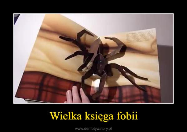 Wielka księga fobii –